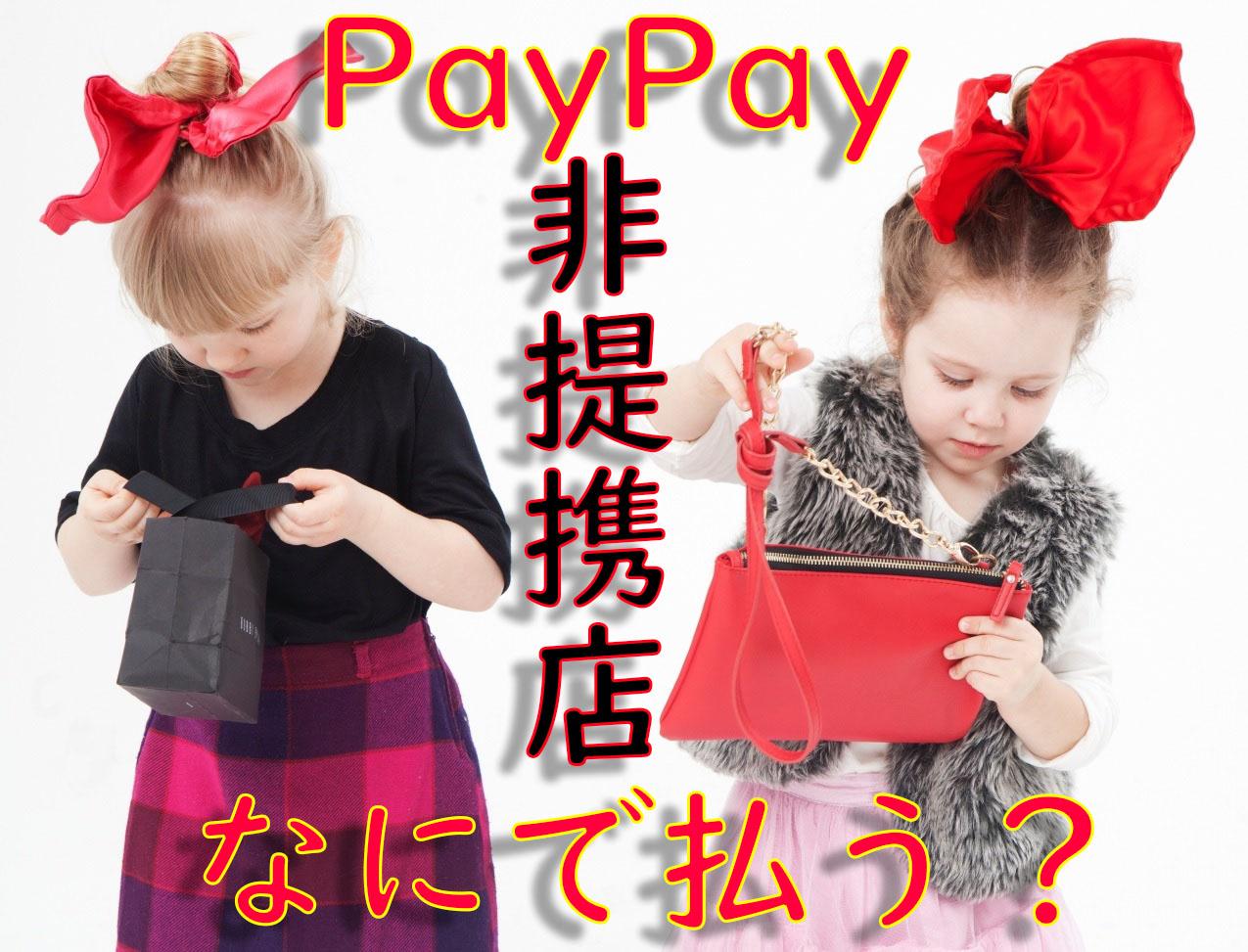 えっ?PayPay非提携店舗なの?何で支払おう?