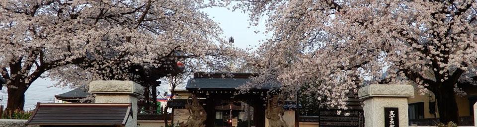 埼玉県ふじみ野市のパソコン出張設定サポートはWELLにお任せください。