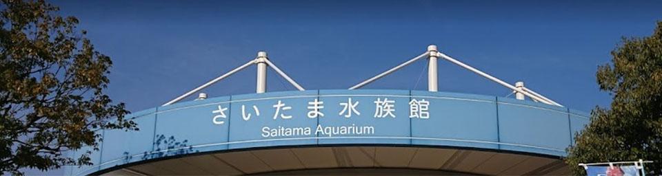 埼玉県羽生市のパソコン出張設定サポートはWELLにお任せください。