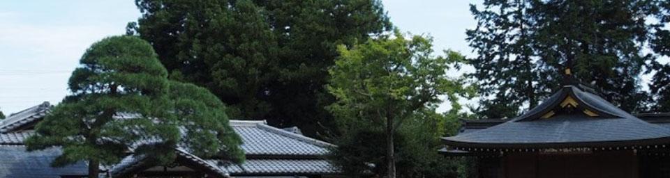 埼玉県日高市のパソコン出張設定サポートはWELLにお任せください。