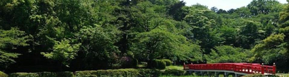 埼玉県さいたま市岩槻区のパソコン出張設定サポートはWELLにお任せください。
