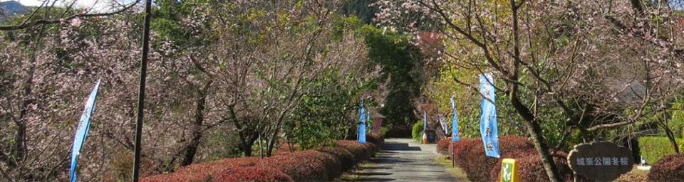 埼玉県神川町のパソコン出張設定サポートはWELLにお任せください。