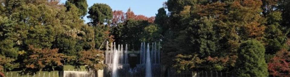 埼玉県川口市のパソコン出張設定サポートはWELLにお任せください。